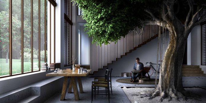 kućno drvo