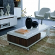 Cool Living Room Center Tables Living Room Centre Table Re Re Center Table Living Room Oniverseco