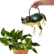 Frankie-the-Frog-Watering-Can