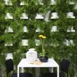 green-wall-italy