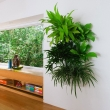 Vertical-Garden-Ideas-For-Modern-Interior-Design
