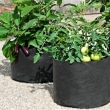 Greenhouse-Vegetable-Grow-Bag-Strawberry-Grow-Pot