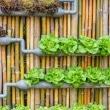How-to-Build-a-DIY-Steel-Frame-Vertical-Garden-Planter-via-Pioneer-Settler