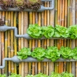 How-to-Build-a-DIY-Steel-Frame-Vertical-Garden-Planter-via-Pioneer-Settler