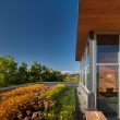 green-roofs-018