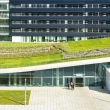green-roofs-06