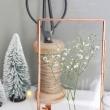 Getrocknete Pflanzen Herbarium Kaufen Das Beste von DIY Blumenpresse selbstgemacht