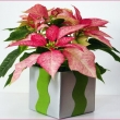 3dd3b06c6faacd375d225202a9aa7960--christmas-arrangements-christmas-centerpieces