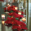 poinsettia-wedding-decorations-lighted-garland-cordless-a-new-way-to-decorate-with-the