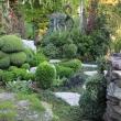 vrt-miha7