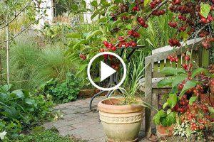 Vrt Zahostnik