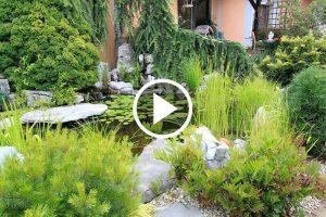 Vrt Prlekija